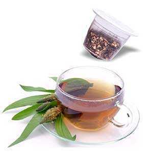 Produzione Tisana Digestiva compatibili Nespresso